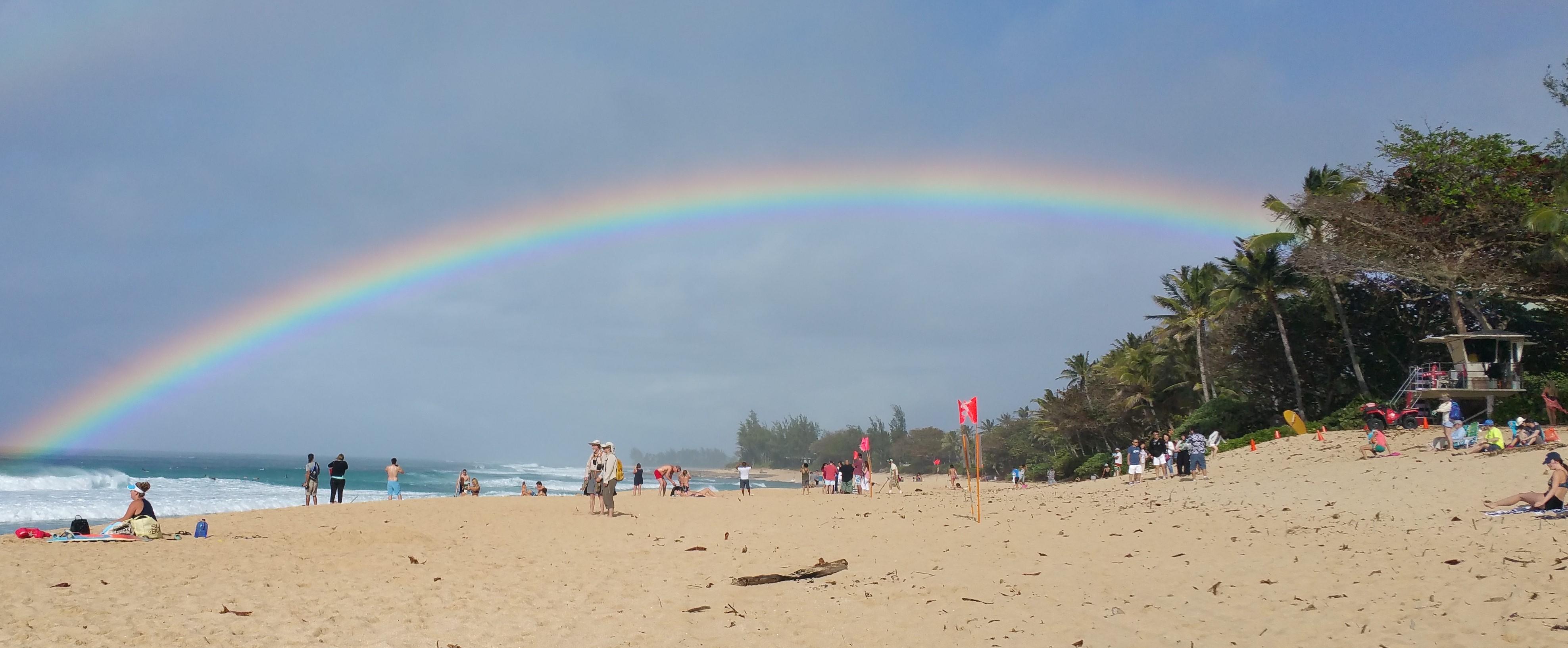 rainbowcrop